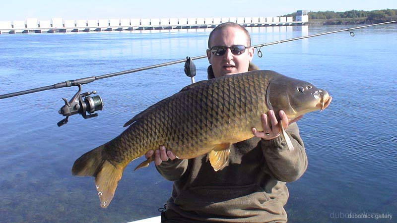 32lb 8oz common carp st lawrence river 8th for St lawrence river fishing